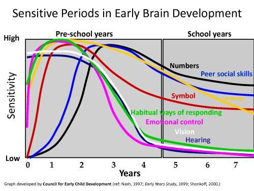 Biểu đồ học tập ở giai đoạn vàng của trẻ
