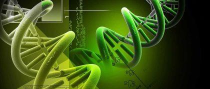 Green100 - Chất tẩy rửa theo công nghệ sinh học